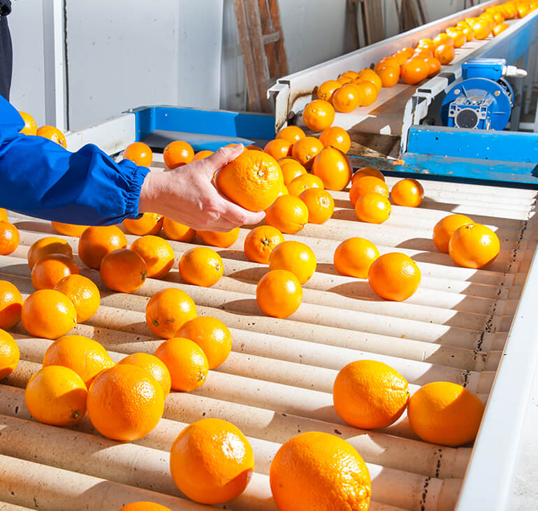 Supply-Chain-Management-for-Fresh-Produce.jpg